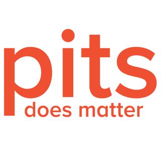PITS Teknoloji ve Bilişim Çözümleri Şirketi - Türkiye