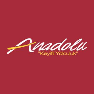 Anadolu Ulaşım