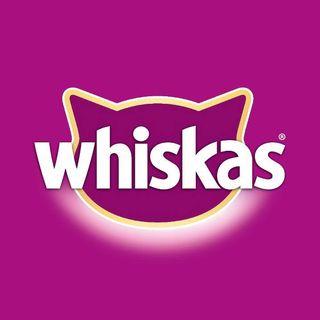 Whiskas Türkiye  Facebook Hayran Sayfası Profil Fotoğrafı
