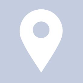 Lipton  Facebook Hayran Sayfası Profil Fotoğrafı