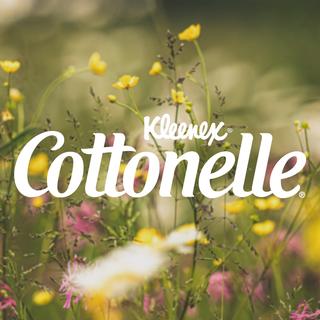Cottonelle México
