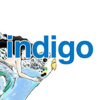 indigo  Facebook Hayran Sayfası Profil Fotoğrafı