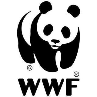WWF Türkiye (Doğal Hayatı Koruma Vakfı)  Facebook Hayran Sayfası Profil Fotoğrafı