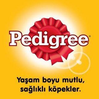 Pedigree TR  Facebook Hayran Sayfası Profil Fotoğrafı