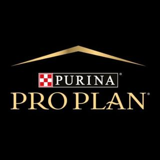 Pro Plan Türkiye  Facebook Hayran Sayfası Profil Fotoğrafı