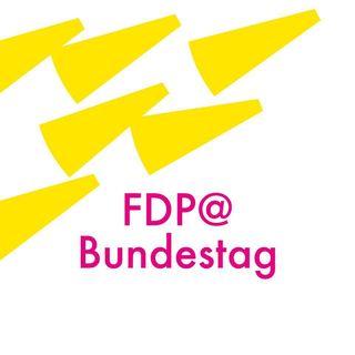 FDP Fraktion Bundestag
