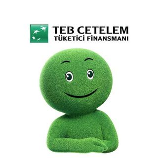 TEB Finansman A.Ş - TEB Cetelem