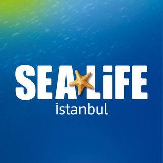 SEA LIFE İstanbul