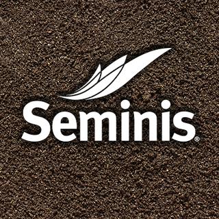 Seminis Vegetable Seeds - United States/Canada