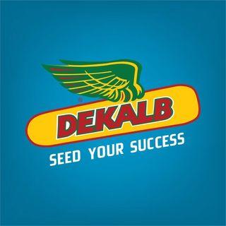 DEKALB Türkiye