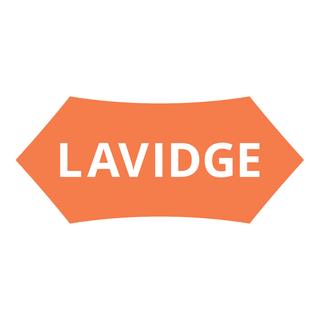 The Lavidge Company