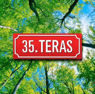 35. Teras