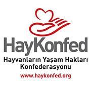 HayKonfed