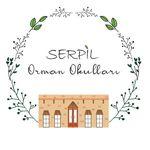 MEB Özel Serpil Orman Okulları